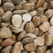 Scottish Pebbles 20 - 30mm