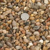 Scottish Pebbles 8 - 14mm