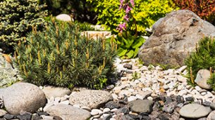 Using Decorative Stones in Your Garden